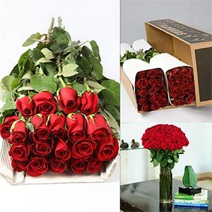 roses in bulk from costco? hmm, could save hundreds...