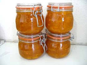 Thermomix Mango Chutney Recipe