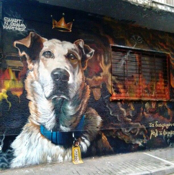 Loukanikos, the dog. Sarri st. Psyrri.