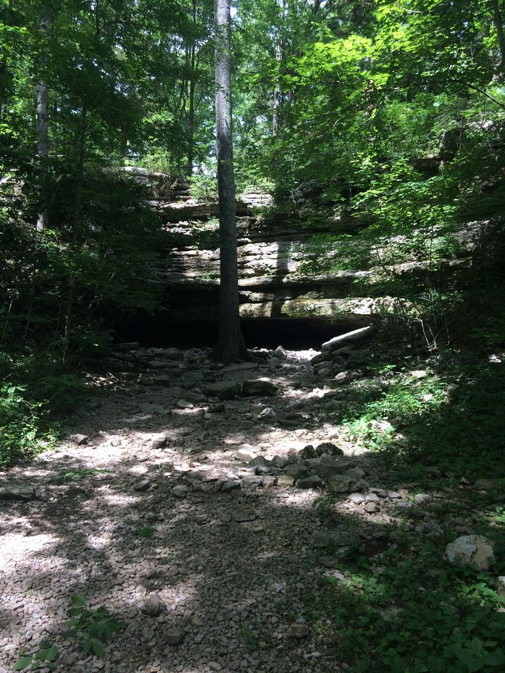 15 best red clay state park images on pinterest cherokee indians jackson cave cedars of lebanon state park publicscrutiny Image collections