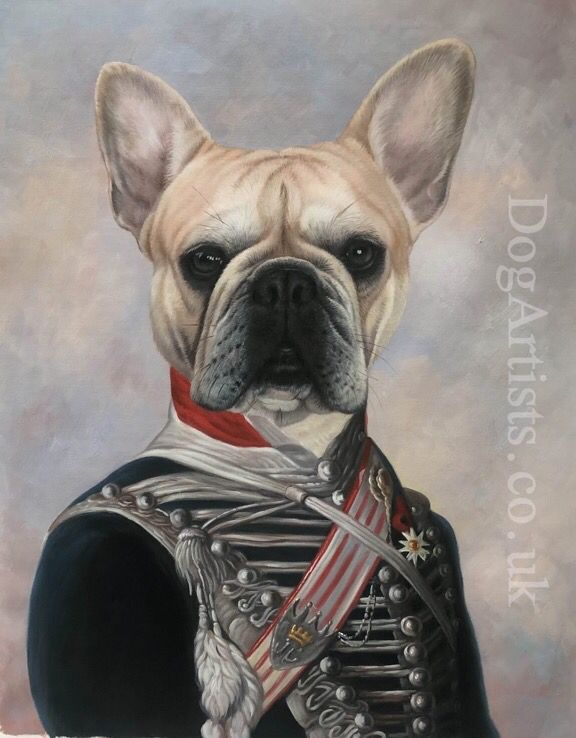 French Bulldog In Hussar Uniform Painting Dog Portraits Painting Pet Portraits Dog Artist