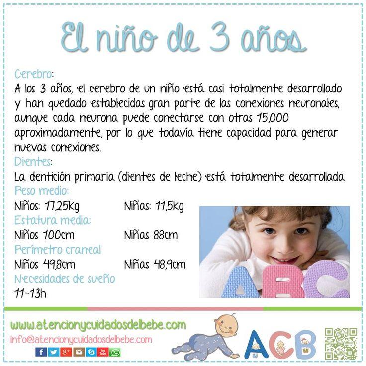 C mo es el ni o de 3 a os atencionycuidadosdelbebe for Actividades pedagogicas para ninos de 2 a 3 anos