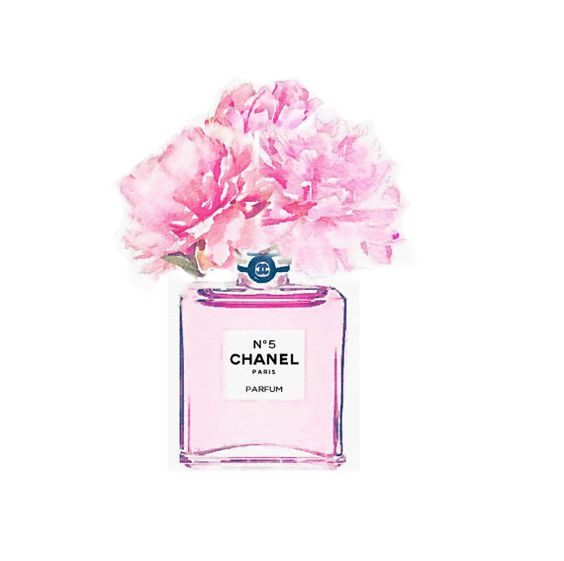 ART PRINT Rosa Nr. 5 Parfüm Flasche Vase Pfingstr…