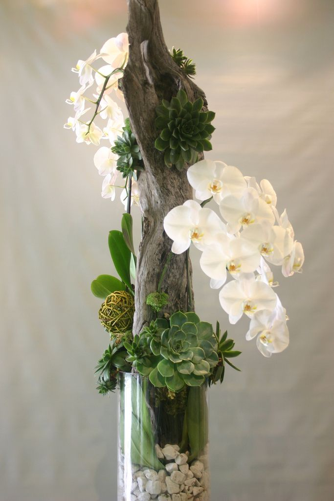 Orchid with Succulents and Driftwood by Garden Party Flowers #Flowers #Orchid #Succulent
