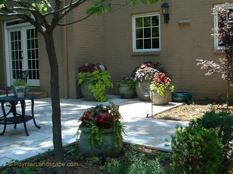 Concrete Patios With Potted Plants And Outdoor Dining Area: Poynter Landscape  Architecture