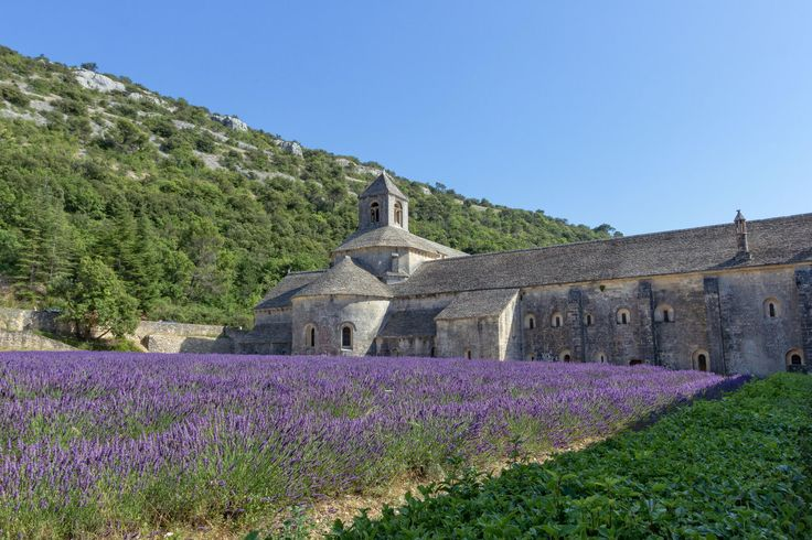 Sénanque Abbey with lavender fields by Luca Quadrio on 500px