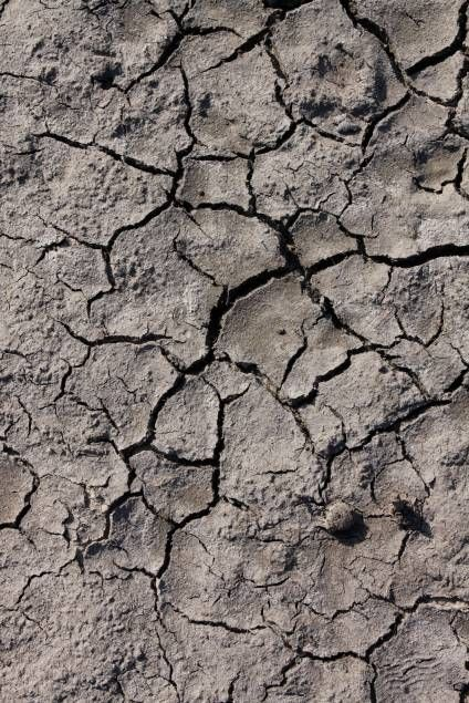 cracked, mud, dry, drought, lifeless, dirt, dehydration