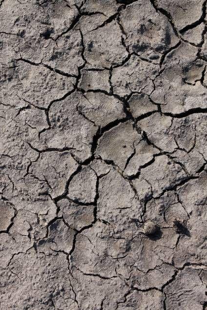 cracked, mud, dry, drought, lifeless, dirt, dehydration