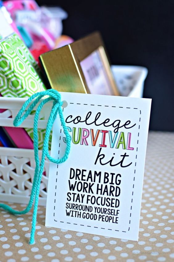 College Survival Kit with printables - cute gift idea for someone on their way to college http://thirtyhandmadedays.com