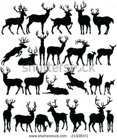 deer pattern idea?