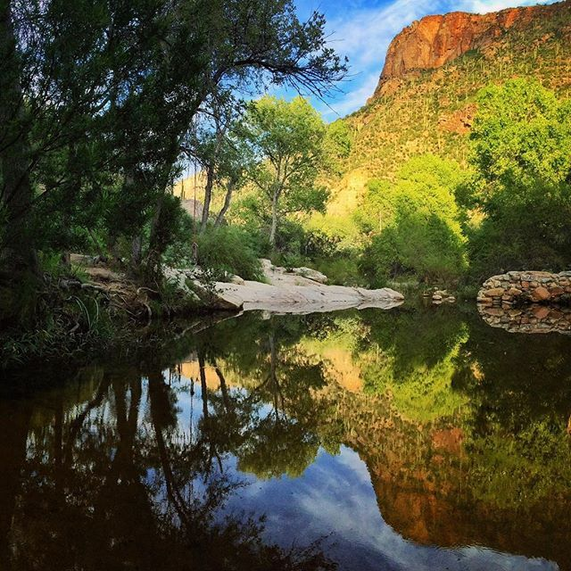 Sabino Canyon is natural desert oasis located in Tucson ...