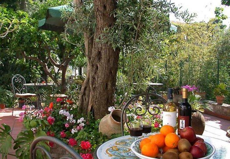 Alison S Gardens Mediterranean Garden: 1000+ Ideas About Mediterranean Garden On Pinterest