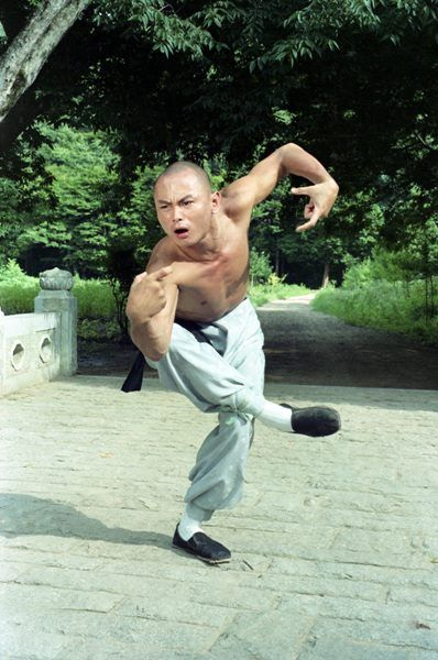 The 36th Blogger of Shaolin. — A fantastic look at Gordon Liu's drunken boxing in...