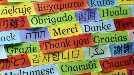 1. Bahasa Inggris : Thank You, Thanks, Thank You Very Much 2. Bahasa Prancis : Merci, Merci beaucoup 3. Bahasa Jerman : Danke 4. Bahasa Spanyol : Gracias 5. Bahasa Jepang : Arigato, Arigato Gozaimasu, Arigato Gozaimashita 6. Bahasa Belanda : Dank Je 7. Bahasa Italia : Grazie 8. Bahasa Portugis : Obrigado 9. Bahasa Korea : Gamsa-hamnida