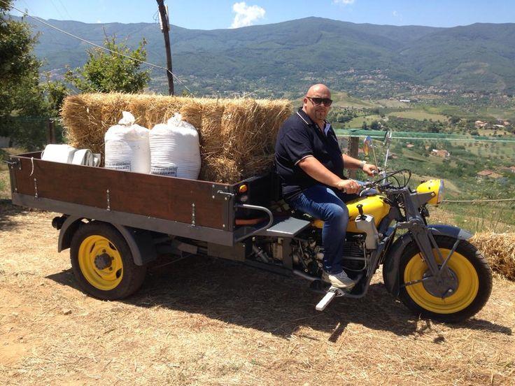 Festa del grano 2014 (Calabria)