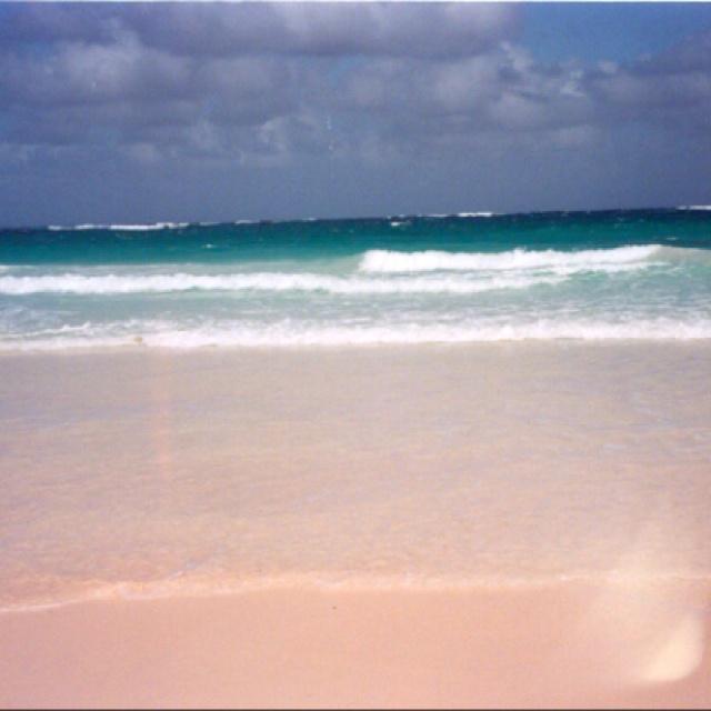 IF U PUT SALT ON BEACH SAND