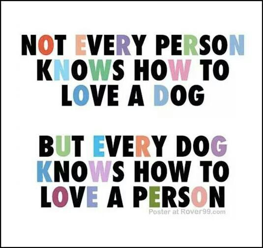 Not every person knows how to love a a dog, but every dog knows how to love a person.