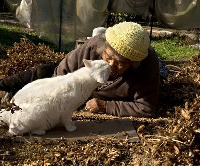 Miyoko Ihara has been taking photographs of her grandmother, Misao and her beloved cat Fukumaru since their relationship began in 2003. Their closeness has been captured through a series of lovely photographs. 12-13-12 / Miyoko Ihara