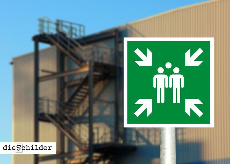Rettungsschild oder Aufkleber Sammelstelle (alte Norm) zur Kennzeichnung von Fluchtwegen. Größen: ab 150 x 150 mm – mit UV/Antigraffiti-Schutzlackierung (nur Schilder). Ausführung in weiß oder lang nachleuchtend. #rettungszeichen #sammelstelle #fluchtwegschilder #notausgang #brandschutzzeichen #warnschilder #fluchtweg #sammelpunktschild #rettungsweg #rettung #rettungszeichen #rettungsschilder