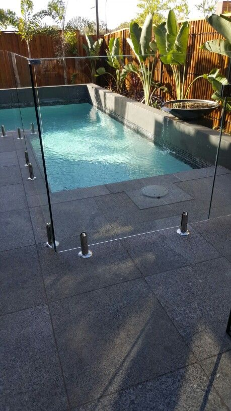 Pool, glass fencing planting with feature pot