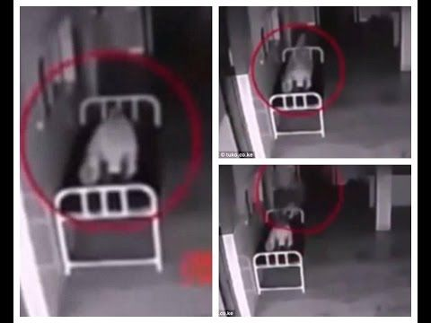 (IMPACTANTE MOMENTO) En Que Un Alma Abandona Su Cuerpo - VIDEOS DE TERROR fantasmas reales 2016 - YouTube