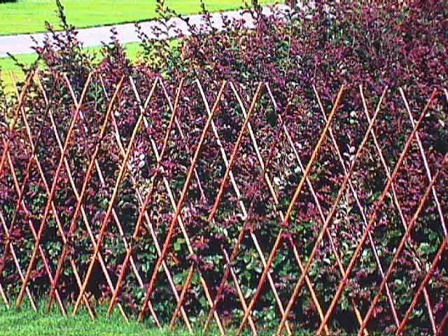 Find This Pin And More On Garden Gate, Fence, Wall.