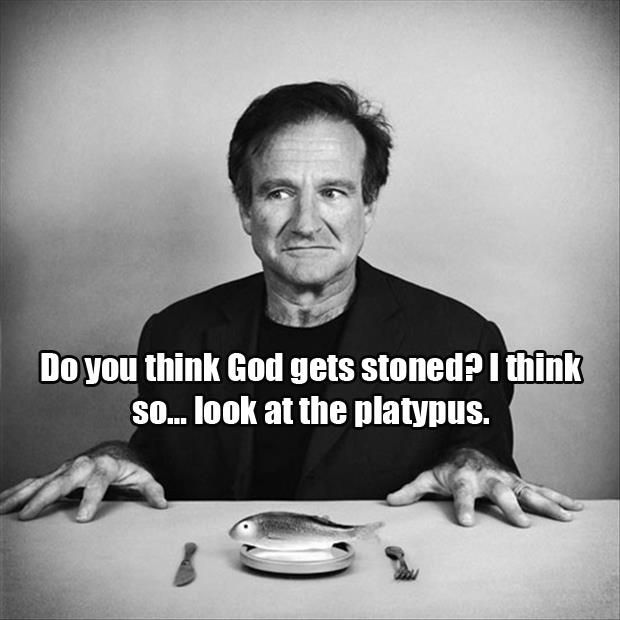 R.I.P. Robin Williams. Thank You For The Laughs - 24 Pics