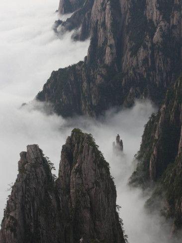 dense fog by Art Wolfe