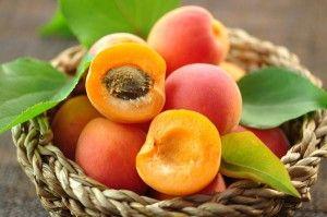 apricot malatya