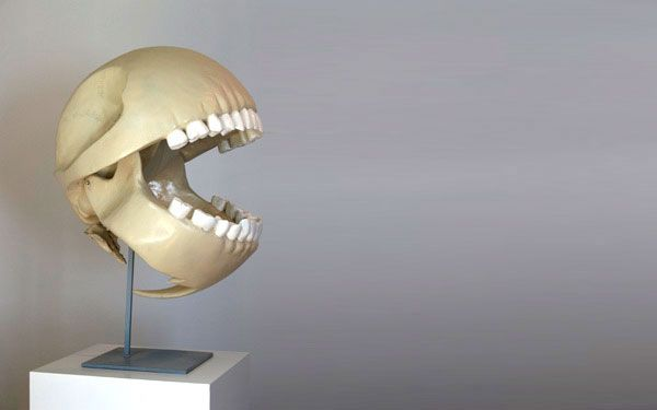 This awesome Pac-Man skeleton was created by Le...   Archie McPhee's Endless Geyser of AWESOME!