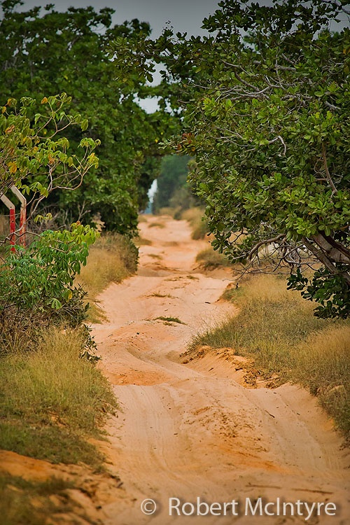 Cool looking dirt road in Angola, more at www.imagesbyrob.blogspot.com