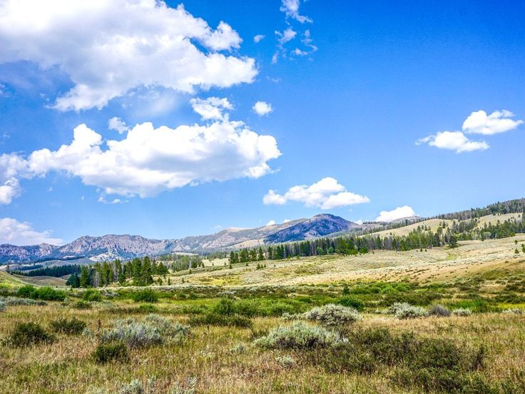 Sky Rim Trail is a classic full-day hike in Yellowstone and a must for fit hikers. The long trail tires you out, however the views along are second to none.