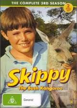 Skippy the Bush Kangaroo  -- Yes, it was a real show!