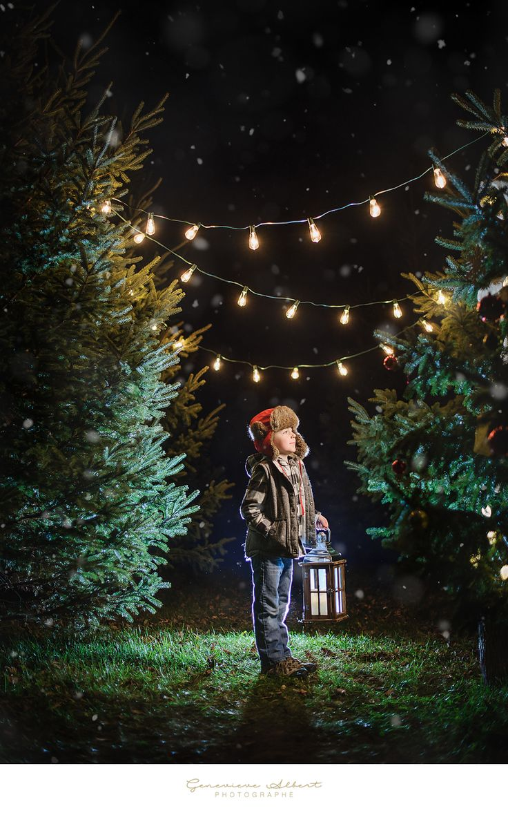 Christmas Minis sessions at night Trees nursery with string lights - Children   by Genevieve Albert Photographe www.genevievealbert.com                                                                                                                                                                                 More