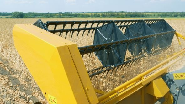 Seed Harvester Threshes Soybeans Seeds for Future Sowing