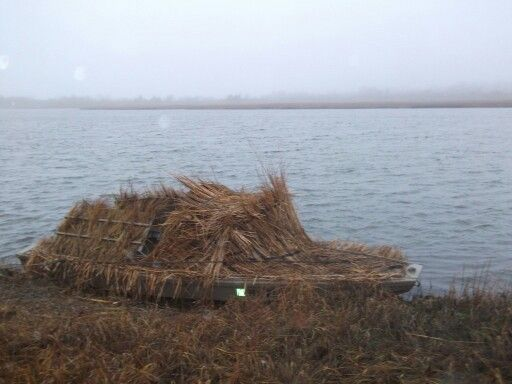 41 best images about barnegat bay sneakbox on pinterest for Barnegat bay fishing