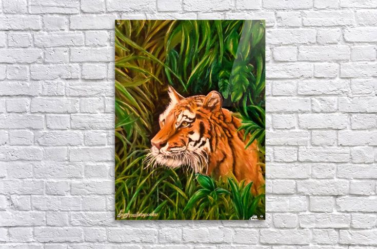 Tiger mania, Tiger obsession, Tiger addiction,  Acrylic Print