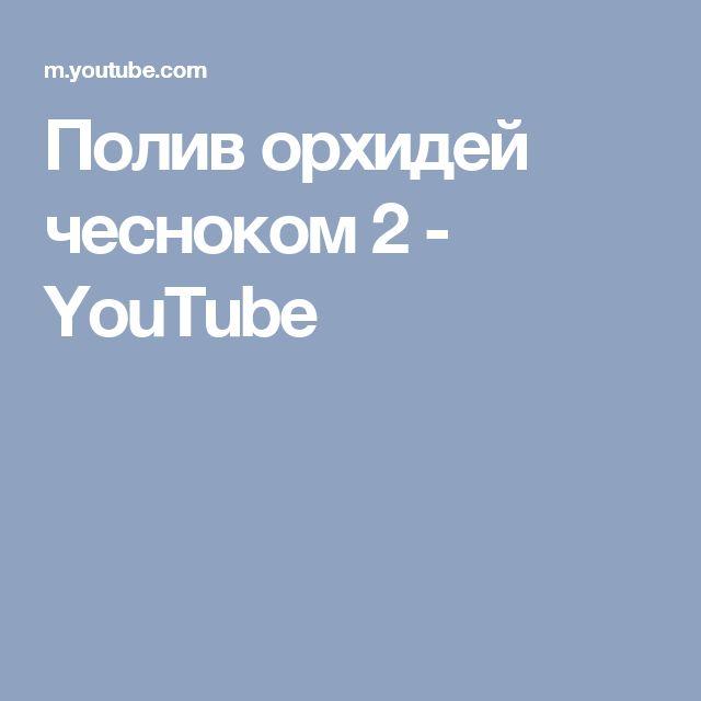 Полив орхидей чесноком 2 - YouTube