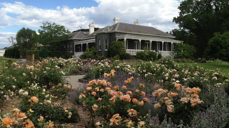 'Bolinda Vale' (Newcastle, NSW, Australia): The rose garden looking back to the house. Photo: Supplied