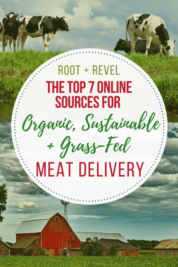 Check out the top online sources for organic, healthy grass-fed meats + sustainable, wild-caught seafood. Meat delivery services straight to your doorstep!