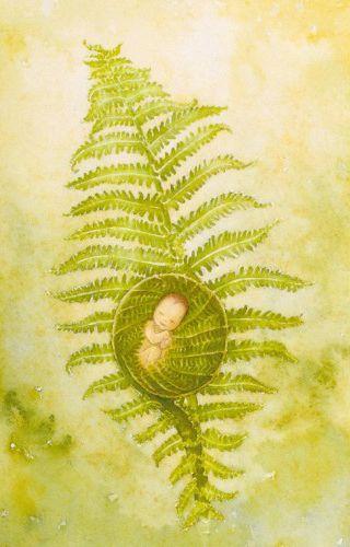 Ontplooiing geboortekaartje. Dit kunstwerk van Yolanda Eveleens kan gebruikt worden als geboortekaartje maar ook als felicitatiekaart. Het is een dubbele kaart en wordt geleverd incl de envelop welke per stuk of per 10 stuks te bestellen zijn. 8,7 x 13,4 cm