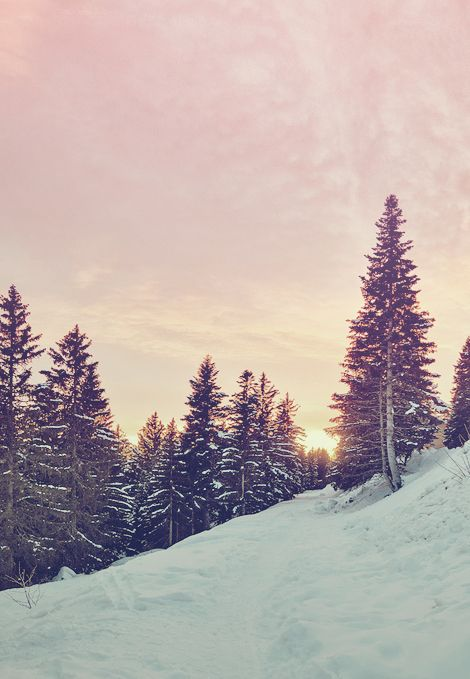 Winter Wonderland Dreaming of a snowy white christmas with a pink sunset - Location unknown