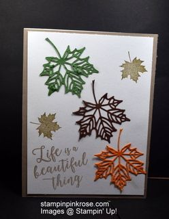 Stampin' Up! Thinking of You card made with Colorful Seasons stamp set and designed by Demo Pamela Sadler This leaves cut out so wonderful with Layering Seasons. See. more cards at stampinkrose.com #stampinkpinkrose #etsycardstrulyheart