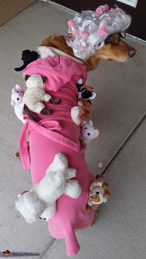 best 25 crazy cat lady costume ideas on pinterest faschingskost m katze damen cooles. Black Bedroom Furniture Sets. Home Design Ideas
