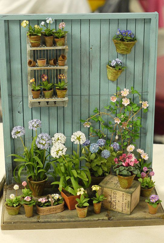 miniature plants and flowers