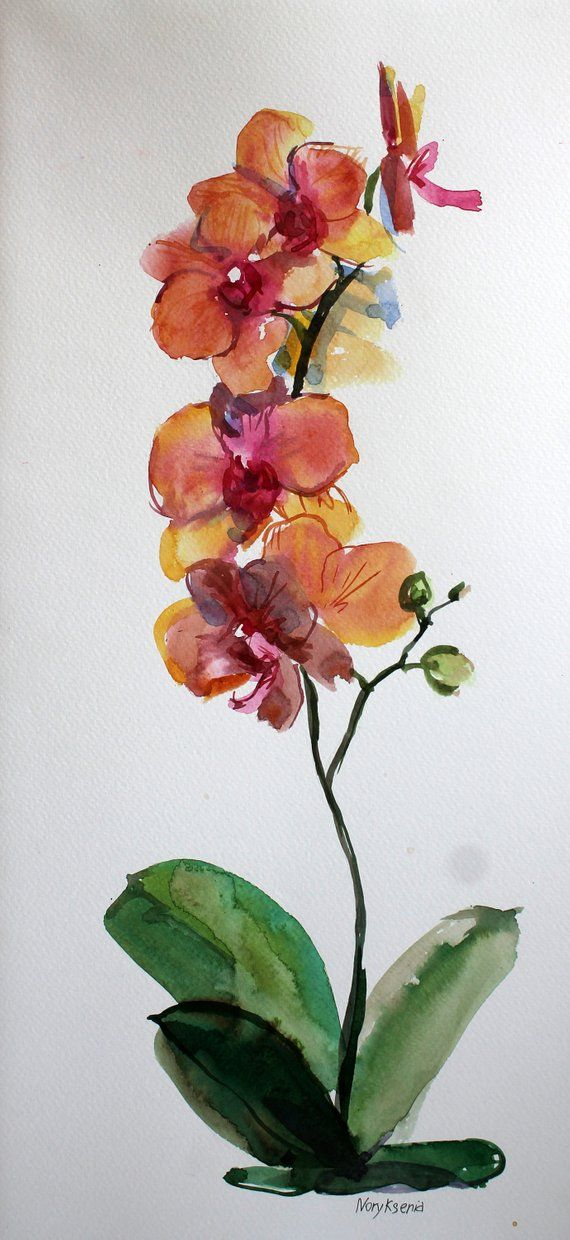 Orchid Watercolor Set Of 3 Original Illustration Floral Etsy Orchids Painting Flower Painting Watercolor Flowers