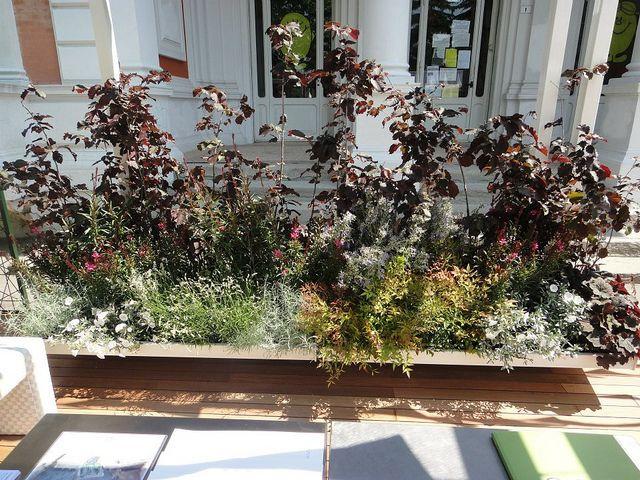 pavimentazione giardino outdoor : 1000+ idee su Pavimentazione Da Giardino su Pinterest Giardinaggio e ...