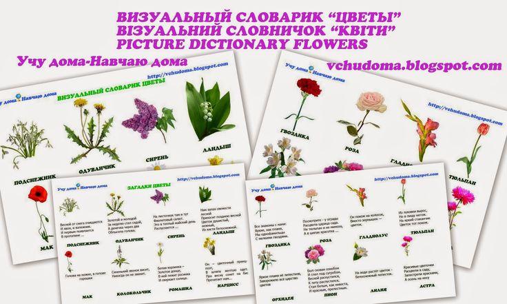 """Учу дома: Визуальный словарик """"Цветы"""", Візуальний словничок """"Квіти"""", Picture dictionary """"Flowers"""""""