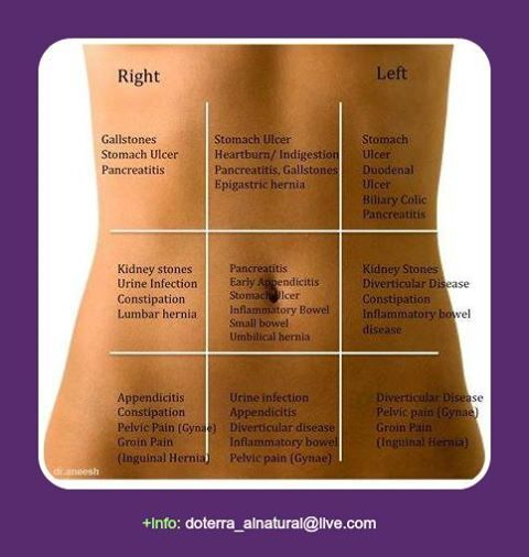 DigestZen essential oil for all your digestion needs. http://mydoterra.com/reneeperry