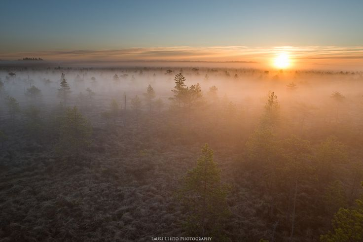 laurilehtophotography posted a photo:  This morning I woke up 2:30 AM and plan was to go out and shoot sunrise at Leivonmäki Nationalpark in Finland. Mornings like this are so amazing and that sunrise would have been nothing special without that mist. Just amazing.